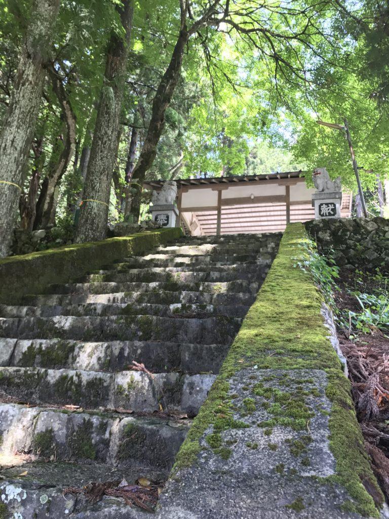 名丸熊野神社-神社の階段に降り注ぐ木漏れ日 2017/6/2