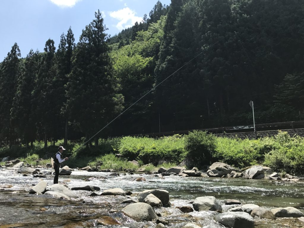 鮎釣り-友釣りという伝統的釣法 2017/7/19