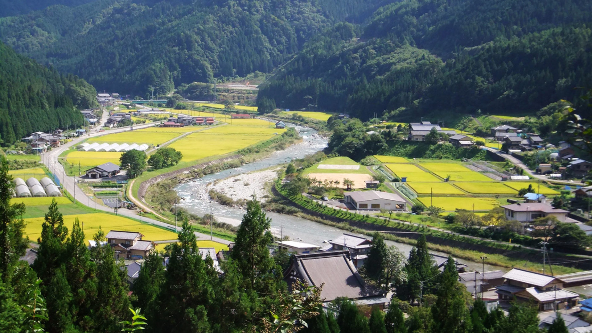 Umeblo – Life in Rural Japan